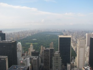 Newyork From The Top Of The Rock